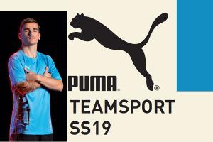 Puma_TS_2019