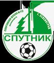 СШ Спутник Зеленоград